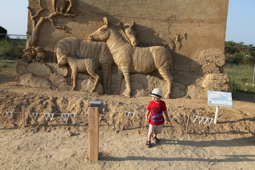 Семейство зебри