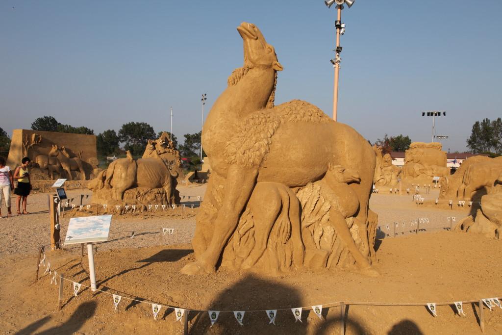 Не сме в пустинята, но си имаме камили!